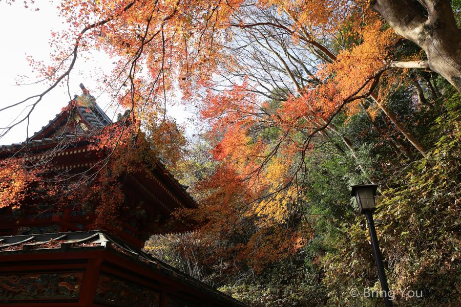 【高尾山】來去東京近郊賞楓景點,我在藥王院賞楓看到富士山啦!(含必吃美食)