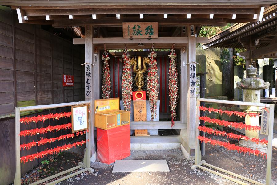 takao-san-9