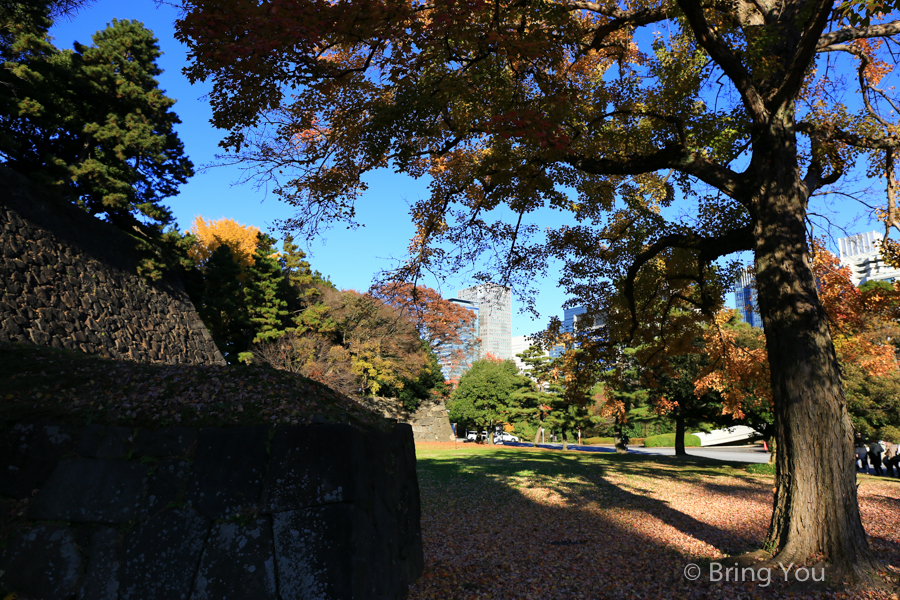 tokyo-imperial-palace-27