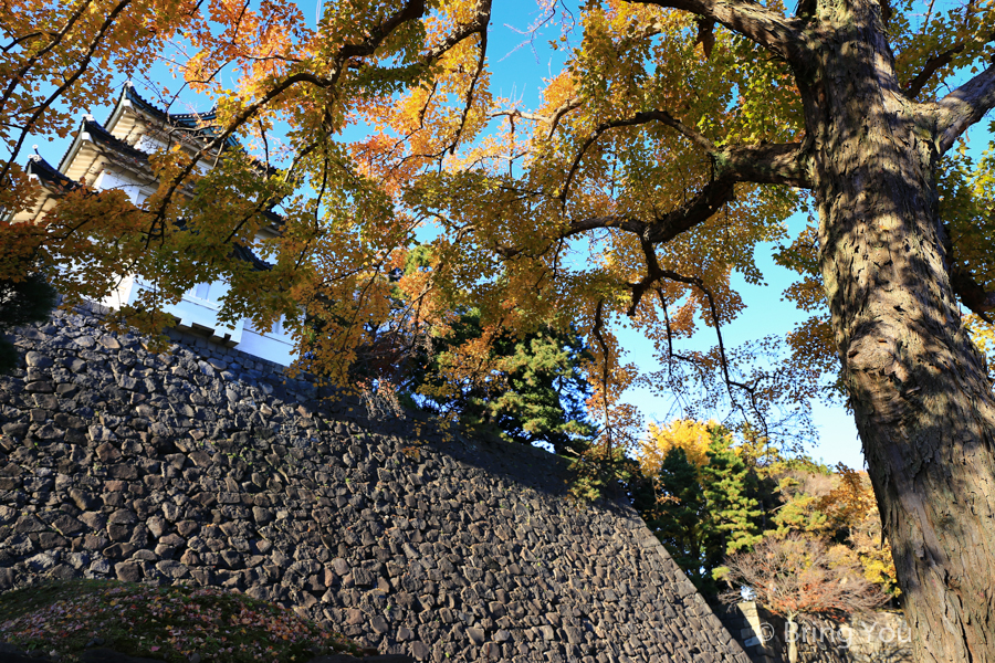 tokyo-imperial-palace-28