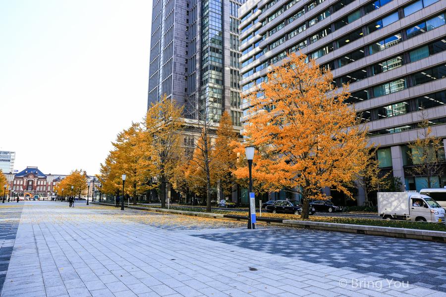 東京車站銀杏