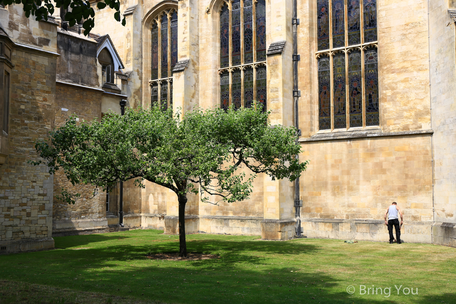 cambridge-18