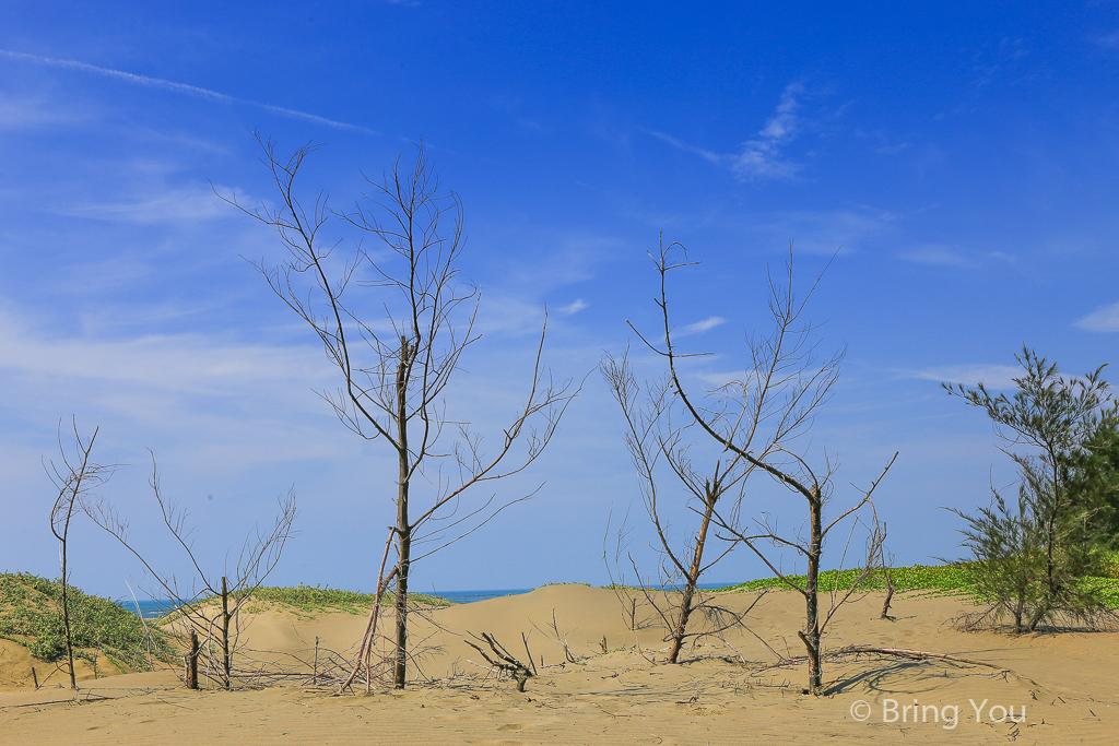 tainan-desert-15