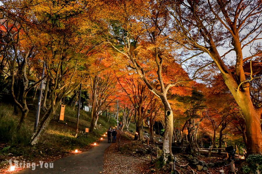 【京都景點|比叡山交通】纜車楓葉美景、延曆寺三塔交通攻略