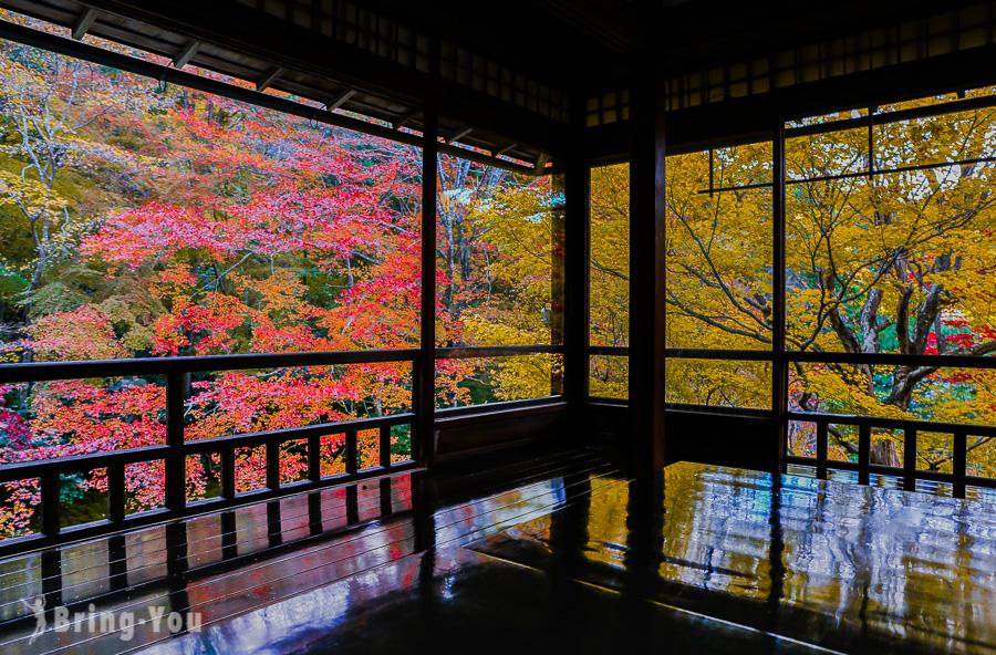 【京都賞楓景點】八瀬 瑠璃光院,如夢似幻的楓葉美景?