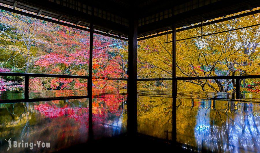 京都賞楓景點
