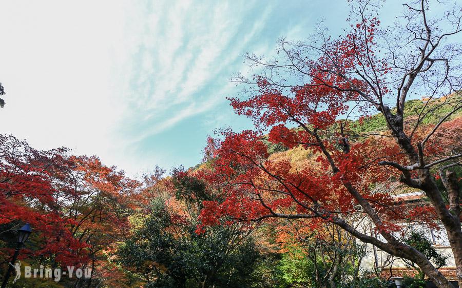 大阪箕面瀑布