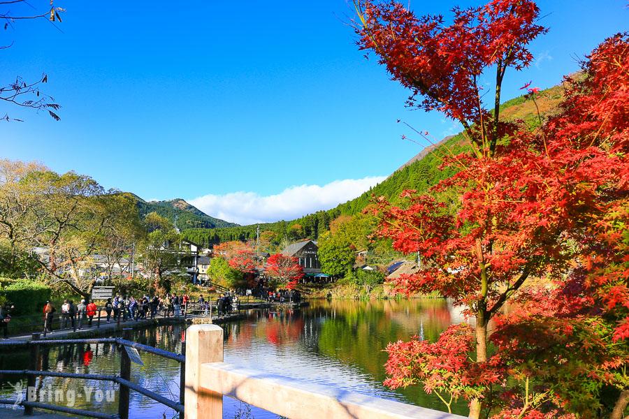 【由布院/湯布院必玩景點】絕美仙境金鱗湖:楓葉、黃昏、清晨沒有霧景色
