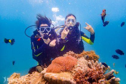 【長灘島潛水】悠遊海底世界,一覽底棲生物的日常