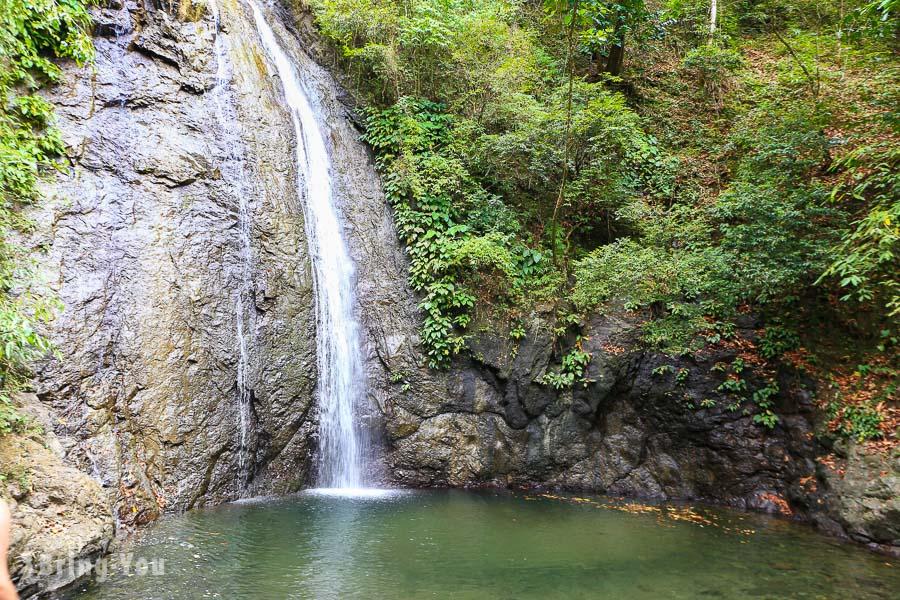 班乃島雨林健行