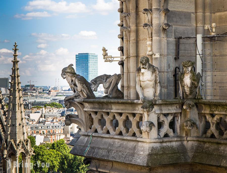 【巴黎聖母院】登頂預約&教堂參觀攻略:尋找夜行神龍怪獸&鐘樓怪人景點之旅