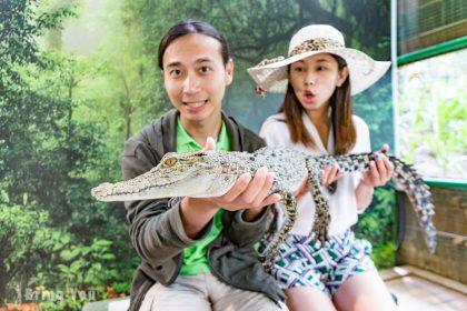 【蘭卡威景點必看】驚恐十分!蘭卡威鱷魚公園KKDAY一日遊團