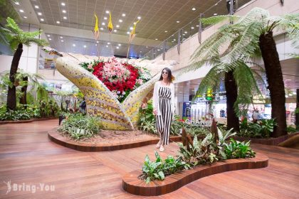 【新加坡樟宜機場設施介紹】第二航廈逛街購物必買、必吃美食、轉機娛樂全攻略