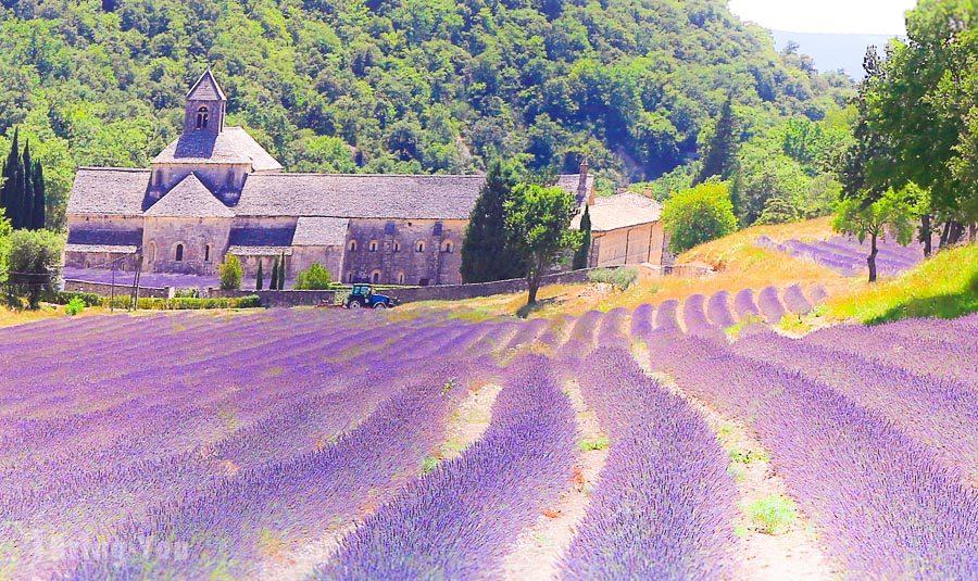 普羅旺斯薰衣草路線