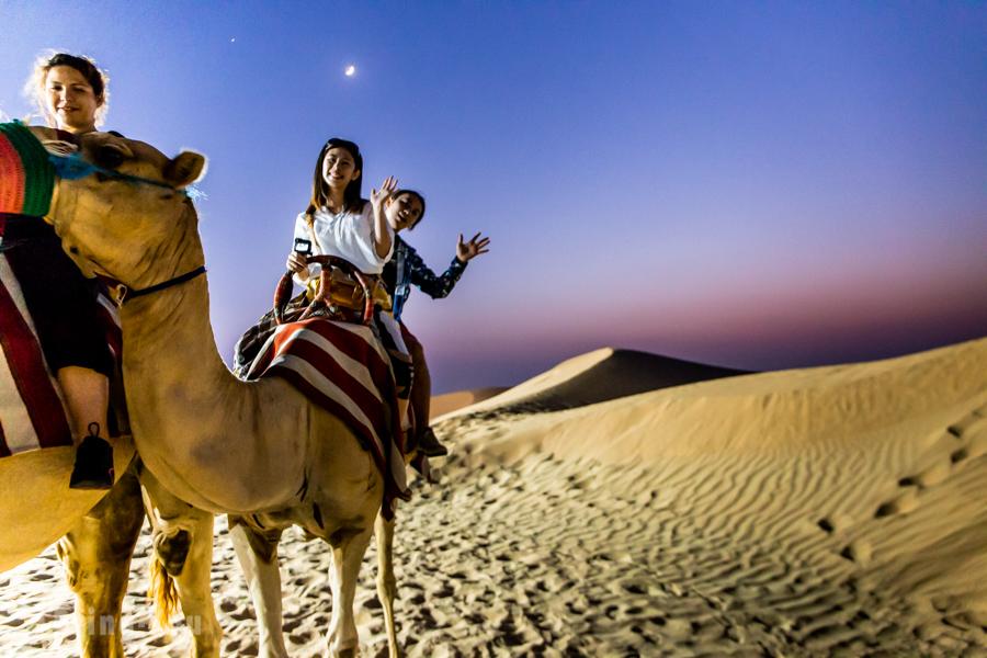 杜拜沙漠騎駱駝看日落體驗