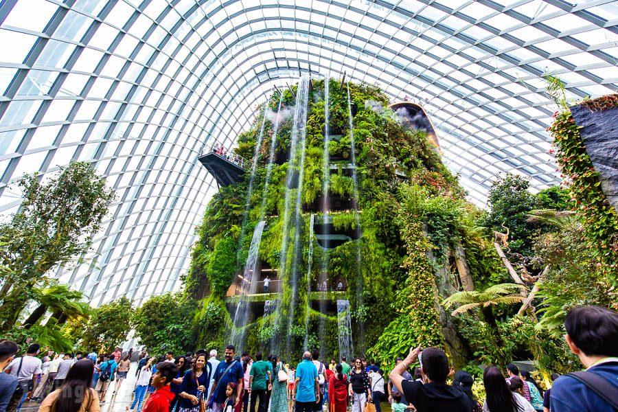 新加坡濱海灣花園霧林