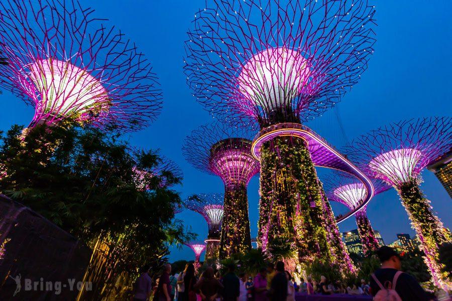 新加坡濱海灣花園天空樹Super Tree