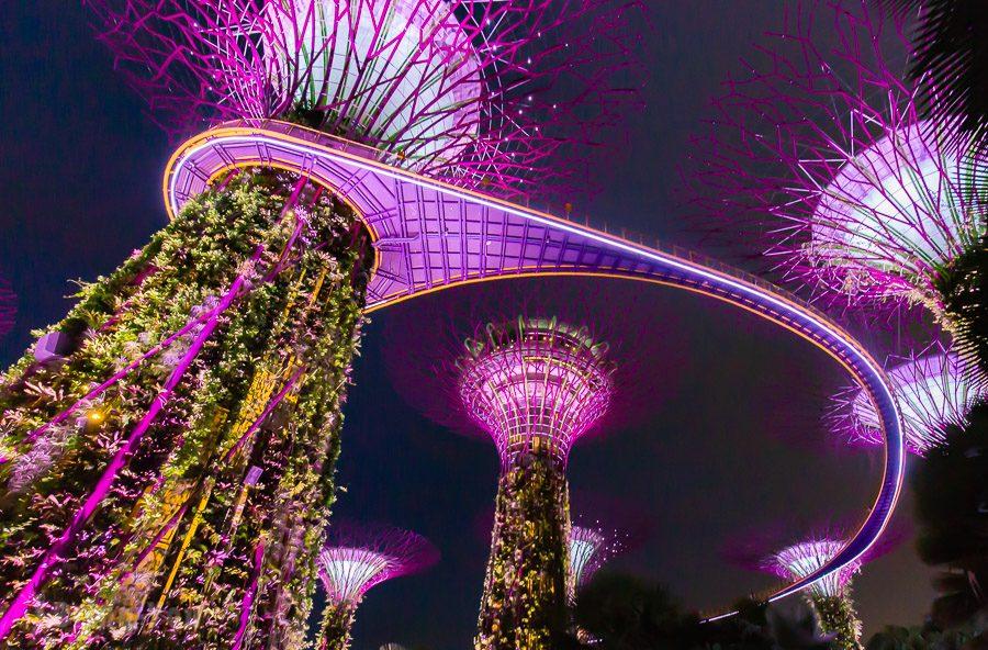 新加坡濱海灣花園天空樹OCBC空中步道