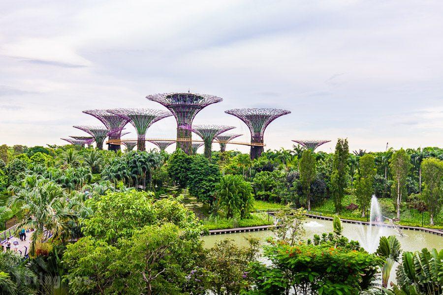 新加坡濱海灣花園天空樹
