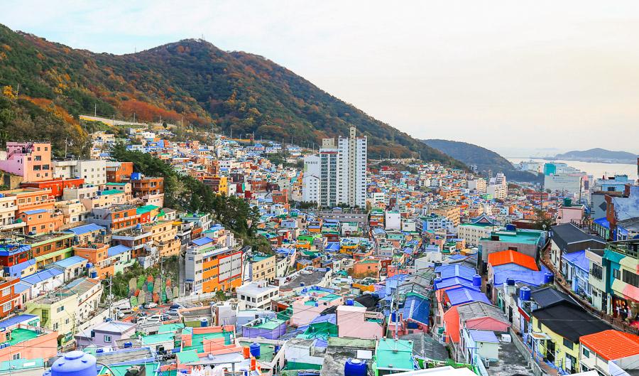 【韓國釜山景點】甘川洞文化村一日遊:交通、必拍小王子彩繪壁畫村攻略