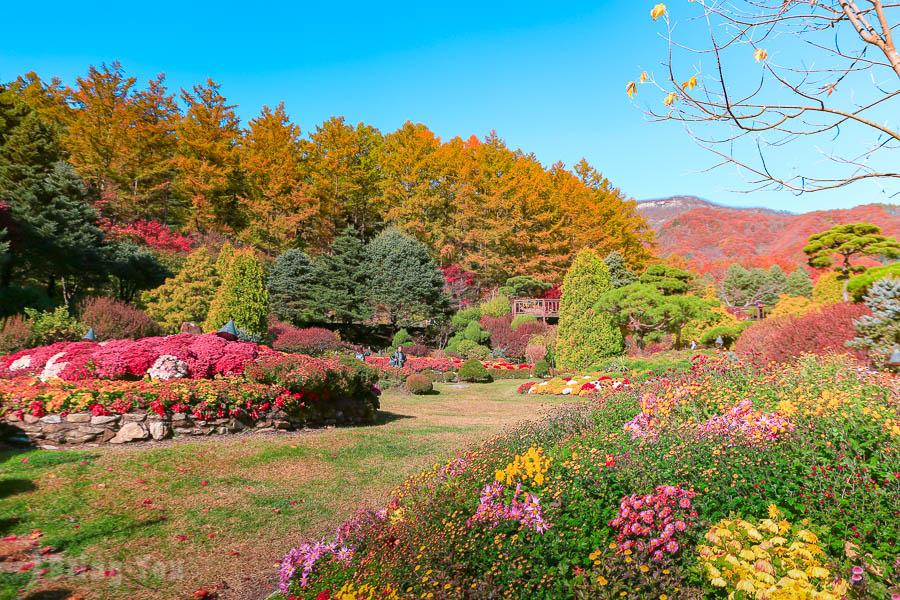 【韓國好玩景點】來首爾必做的十件事,首爾有什麼必體驗的文化?