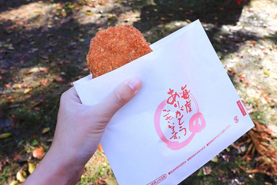 京都瑠璃光院美食