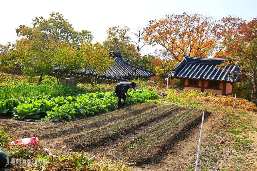 慶州一日遊景點