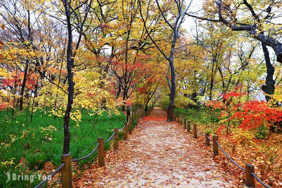 咸陽上林公園