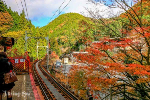 叡山電車沿線景點:叡山電車楓葉隧道交通攻略