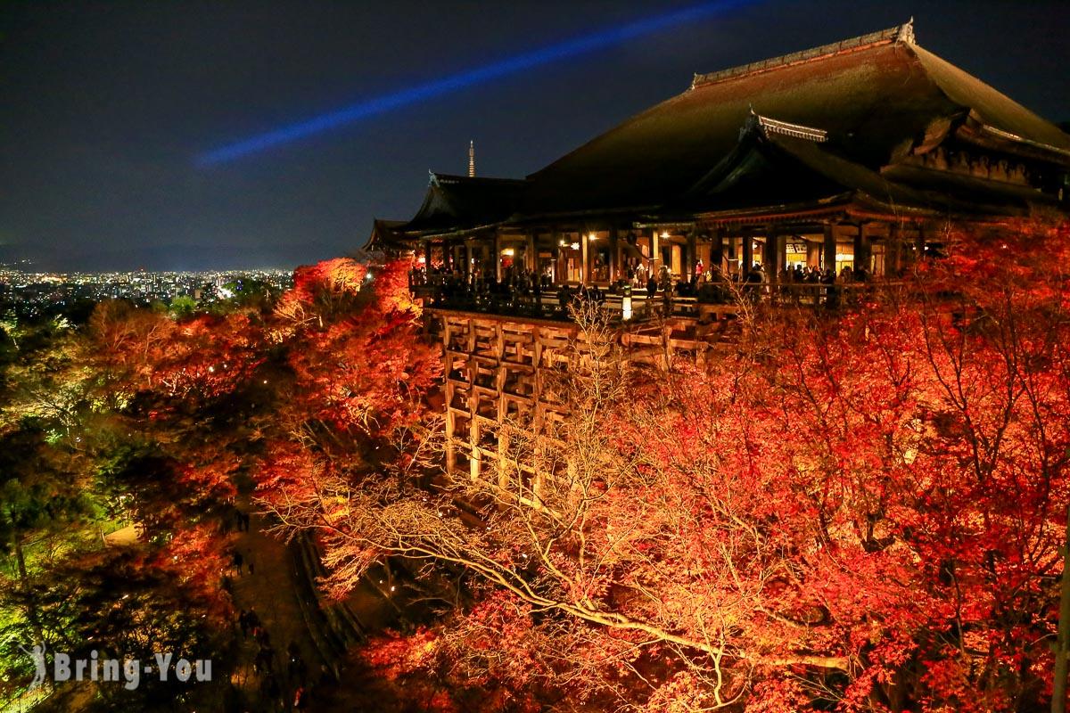 【京都清水寺】寺內推薦必看人氣景點、夜楓、櫻花季、地主神社參觀重點(本堂屋頂已整修完畢)