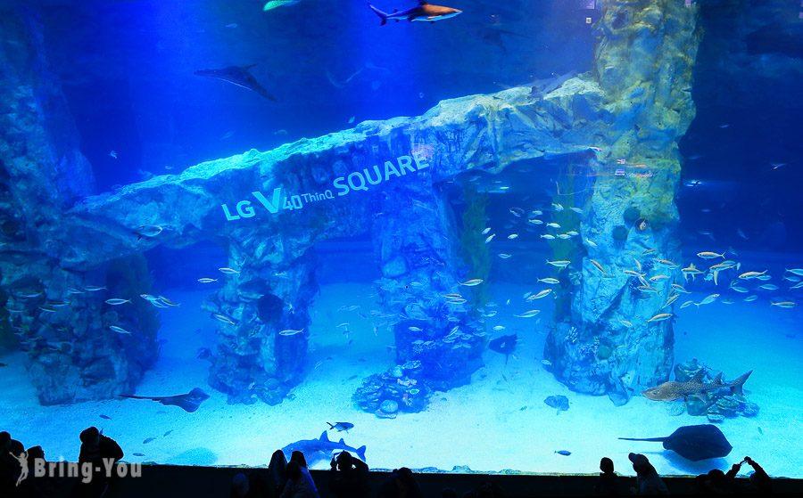 樂天世界水族館
