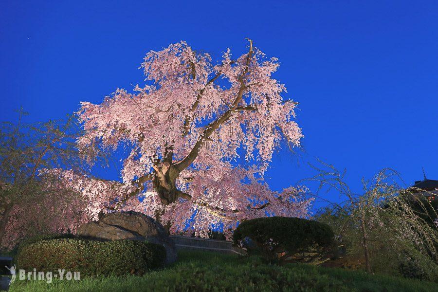 京都圓山公園
