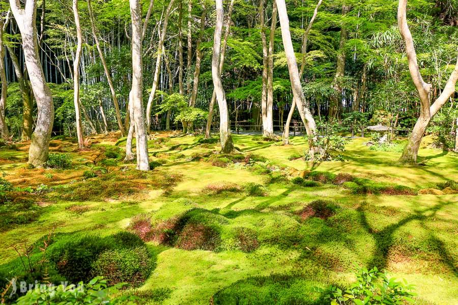【嵐山景點】祇王寺:嵐山小徑內靜謐、充滿哀愁、青苔茂密的寺廟