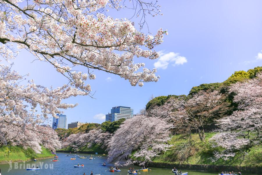 【東京賞櫻名所】千鳥之淵櫻花:划船賞櫻的悠閒時光