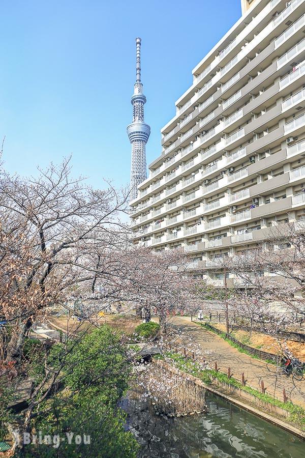 大橫川親水公園