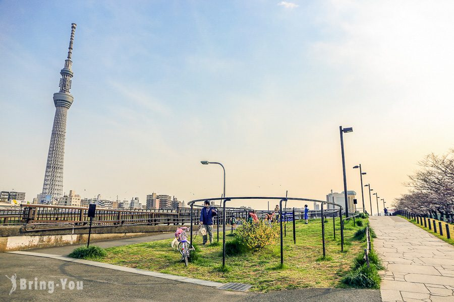 隅田公園櫻花祭