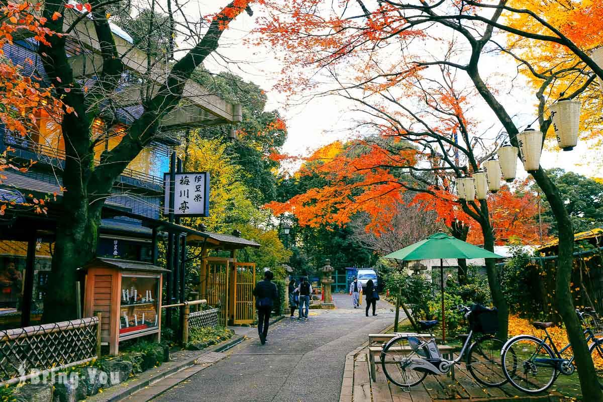 東京上野恩賜公園景點攻略:秋季銀杏賞楓散策,博物館、神社等景點介紹