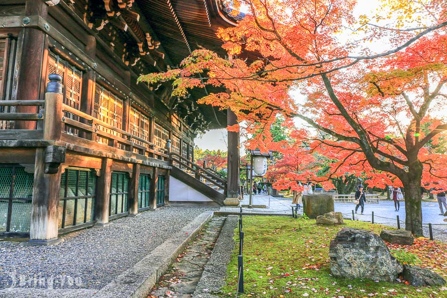 9 Best Autumn Leaves Viewing Spots in Kyoto Including Popular Sites and Rare Finds
