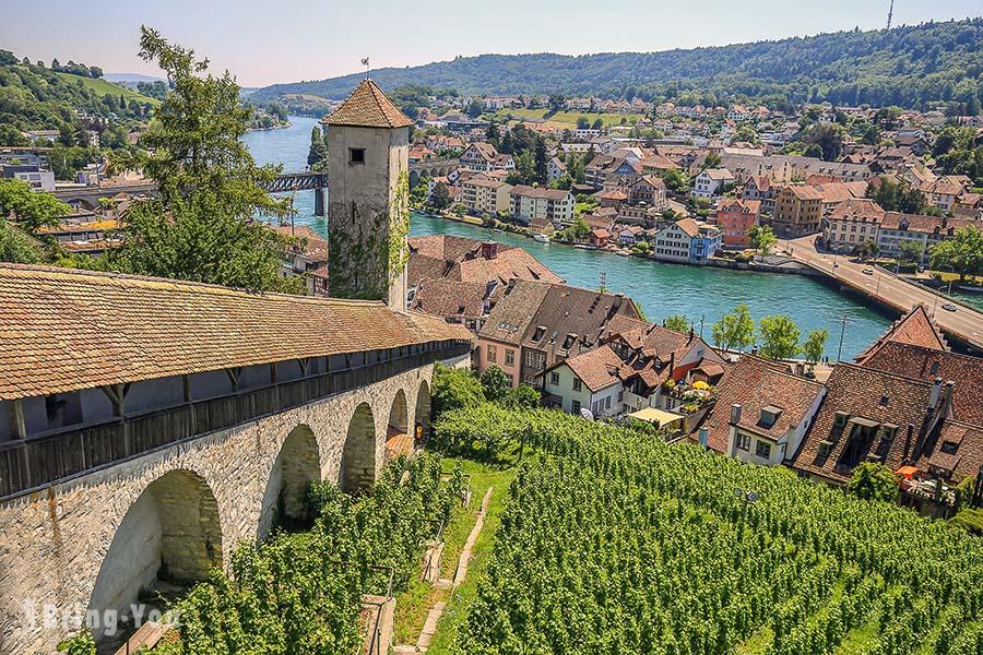 瑞士 Schaffhausen|沙夫豪森景點&交通:老城區凸窗&濕壁畫、米諾要塞眺望葡萄園美景