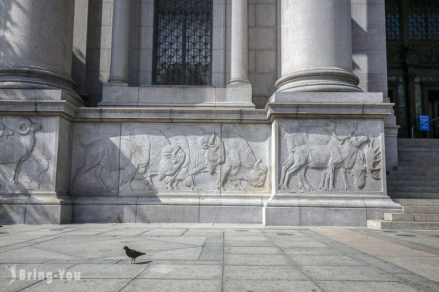 紐約自然歷史博物館