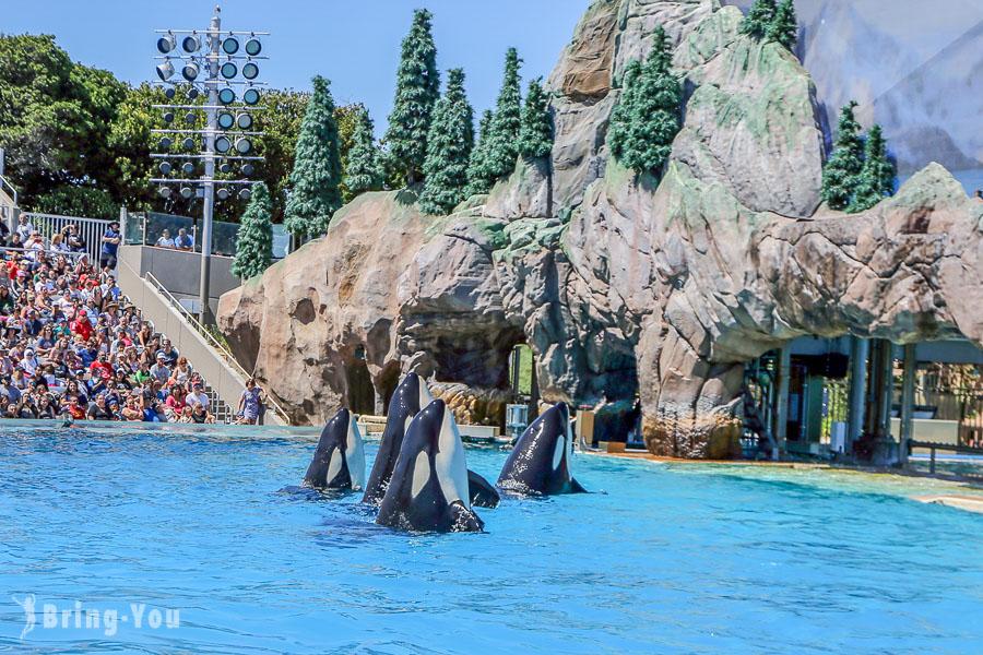 【聖地牙哥海洋世界主題公園】通吃卡門票、遊樂設施攻略