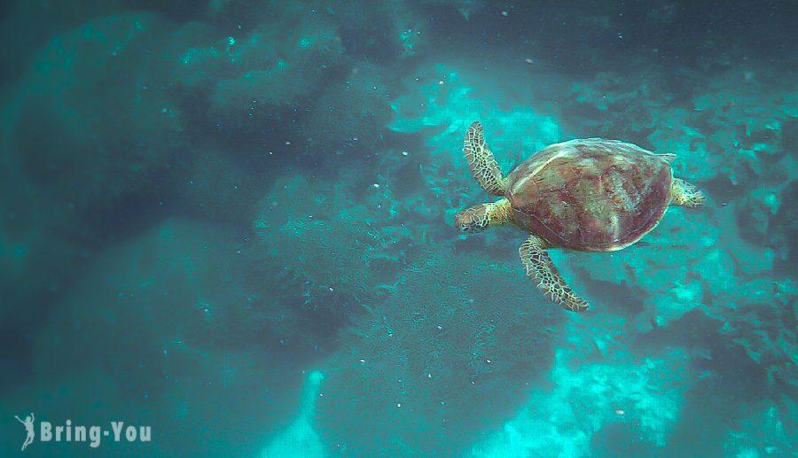 大堡礁景點