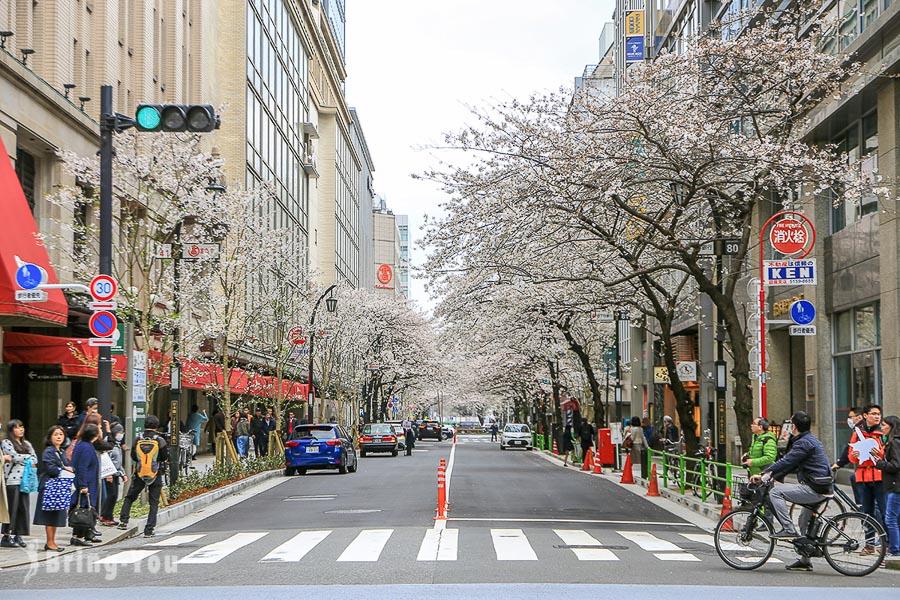 八重洲櫻花通