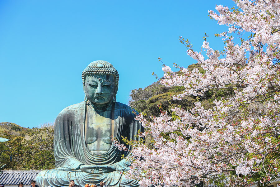 【鎌倉】高德院鎌倉大佛:電鐵江之電「長谷站」輕旅行來看日本最大戶外佛像
