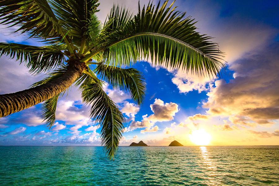 【夏威夷自由行】如何安排夏威夷歐胡島旅遊行程、預算花費、旅遊季節報你知