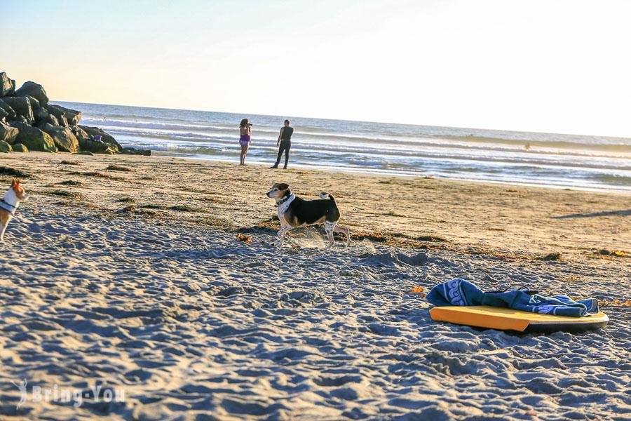 聖地牙哥 Ocean Beach