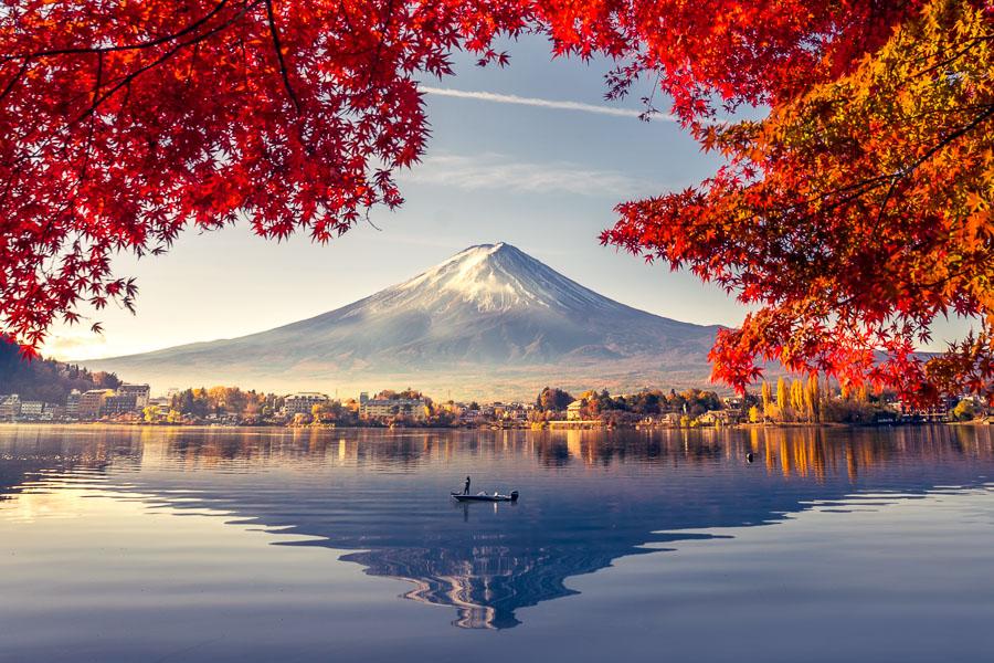 【河口湖自由行攻略】看富士山一日遊行程、景點、交通、美食、住宿攻略