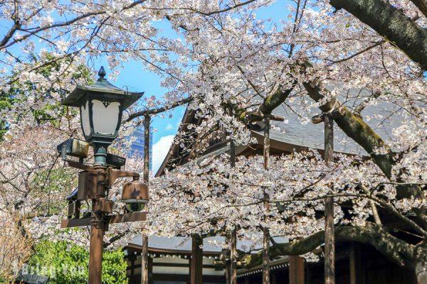 【東京賞櫻景點】靖國神社:日本軍國主義之魂