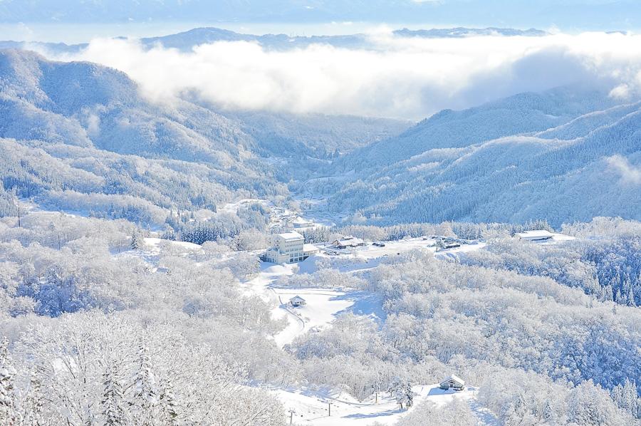【山形縣旅遊提案】朝日町有什麼好玩?來一趟日本東北充電之旅