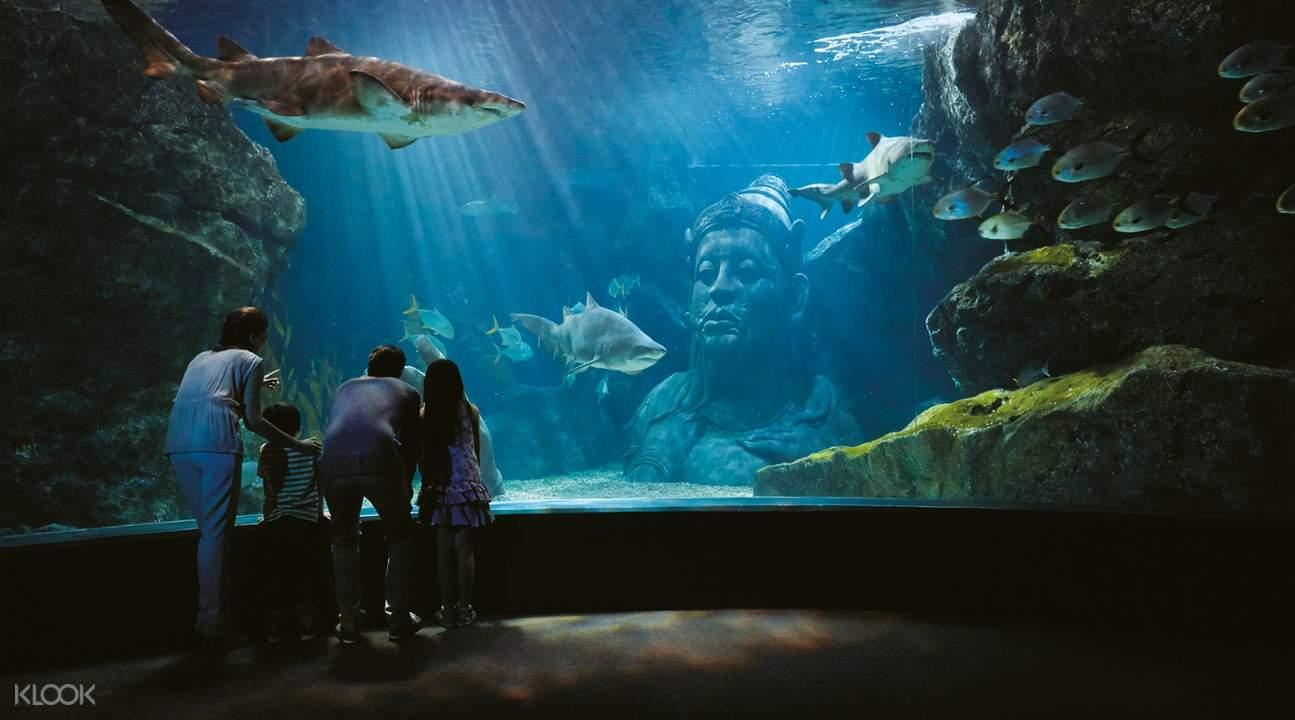 暹羅海洋世界
